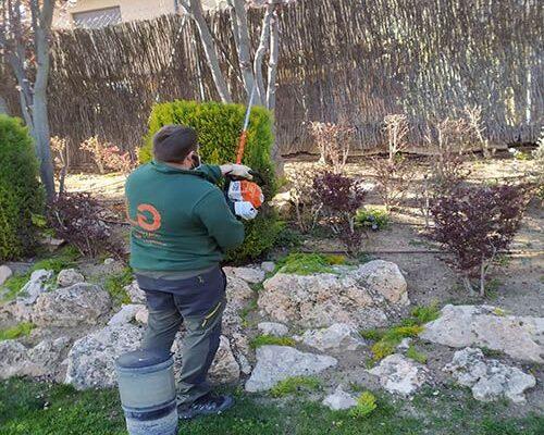 contratar jardinero